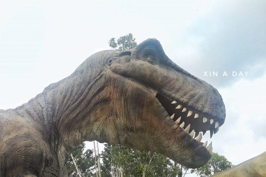 东湖侏罗纪花园 Don Hu Jurassic Garden Muar