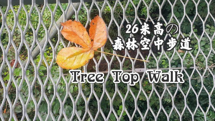 Tree Top Walk @ Sungai Sedim Kedah