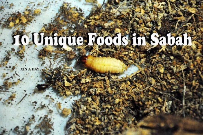 沙巴10种新奇美食 10 Unique Foods in Sabah-Pais-Manis1-1