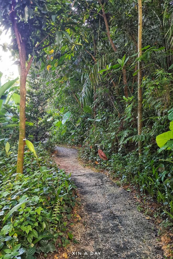 隐藏版都市森林 Taman Tugu Kuala Lumpur