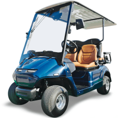 Golf Cart Insurance 89 Ford Bronco Wiring Diagram Xinsurance