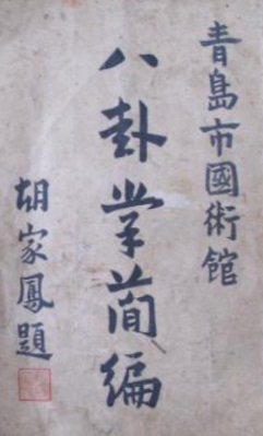 THE BAGUA MANUAL OF YIN YUZHANG | Brennan Translation