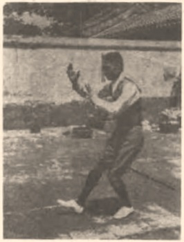 《太極拳淺說》 徐致一 (1927) - photo 1