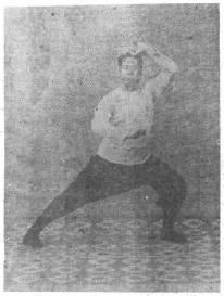 THE ART OF TAIJI BOXING (TAIJI QUAN SHU)   Brennan Translation