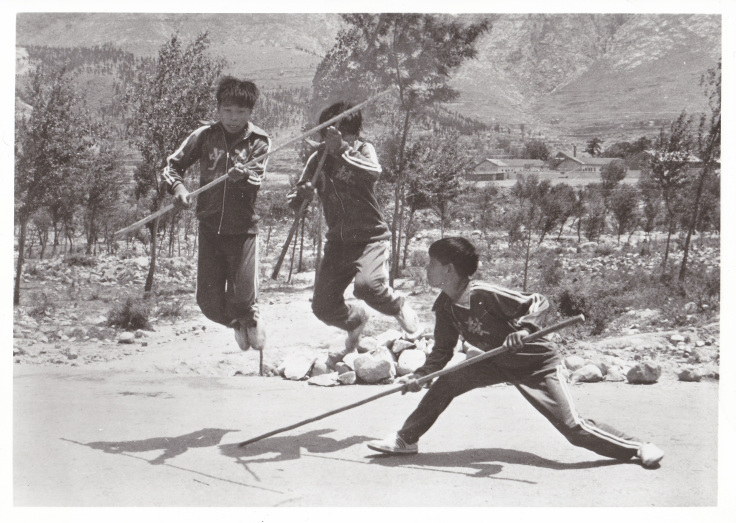 Play and Learning in the Martial Arts
