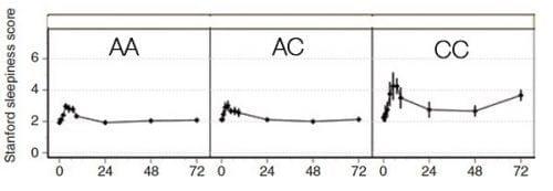 איך DNA וגנטיקה משפיעה השעפת הקנאביס