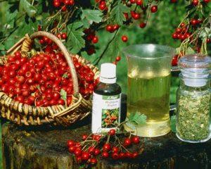 Экстракты из ягод и трав