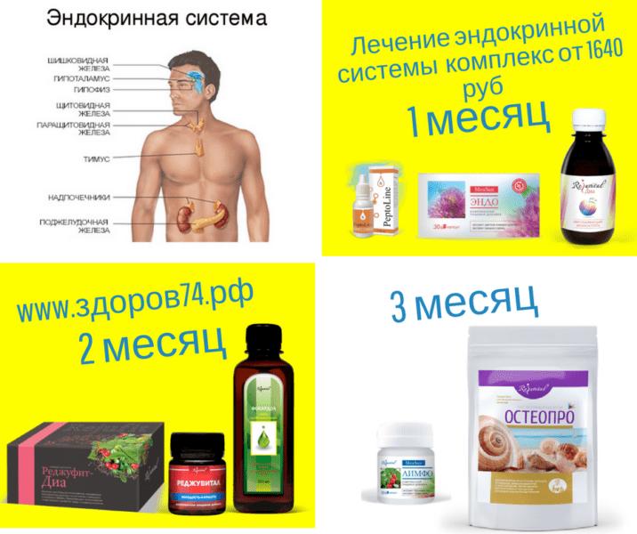 комплексное применение продукции Реджувитал для эдокринной системы