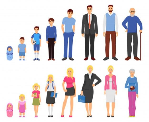 גברים ונשים בתקופת החיים בגילאים שונים