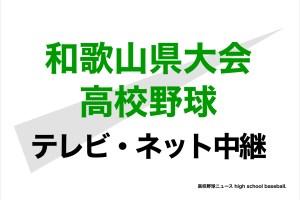 和歌山 高校 速報 野球 大会 <第103回全国高校野球>全国高校野球 和歌山大会