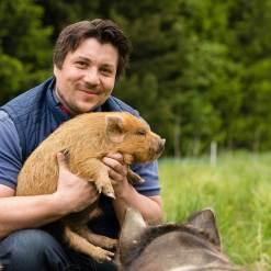 Schweine streicheln mit Familienrabatt