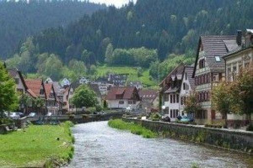 Vista de la Selva Negra, Alemania