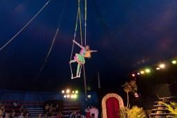 Cirkus Koloni 201536