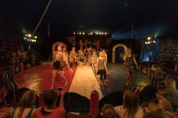 Cirkus Koloni 201543