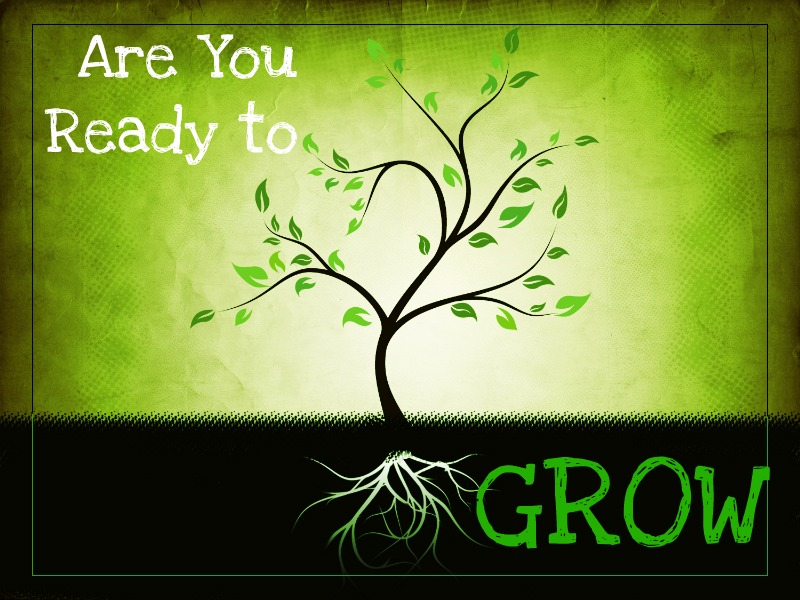The Meaning of Spiritual Growth