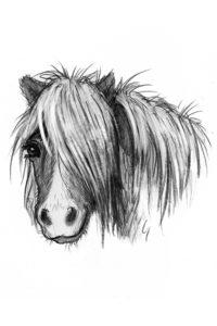 Hästböcker för barn Isa och Minigänget
