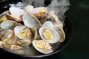 084.clams2