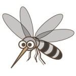 暑くなったらキケン!蚊アレルギーの症状は?薬と刺されない対策方法は?!