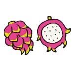 栄養満点!美肌効果が高いドラゴンフルーツの食べ方は?種類の選び方は?