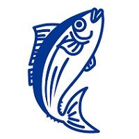 206.fish-allergy