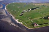 www.mitten-im-grnen.de - Insel Neuwerk