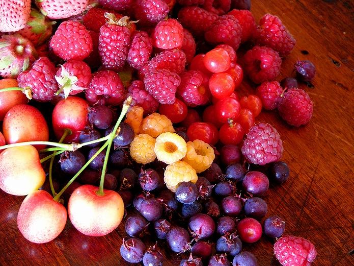 旬なフルーツ・果物を食べようよ 旬のフルーツ一覧
