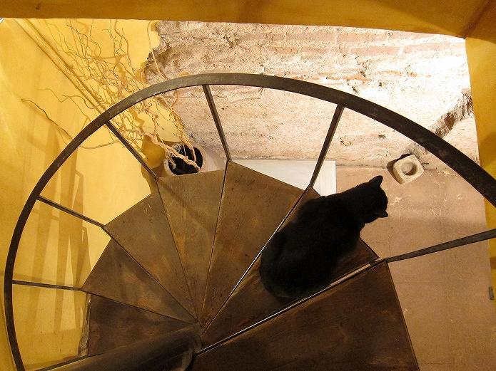 おうちカフェインテリアをお部屋選びから 螺旋階段で目が回る009