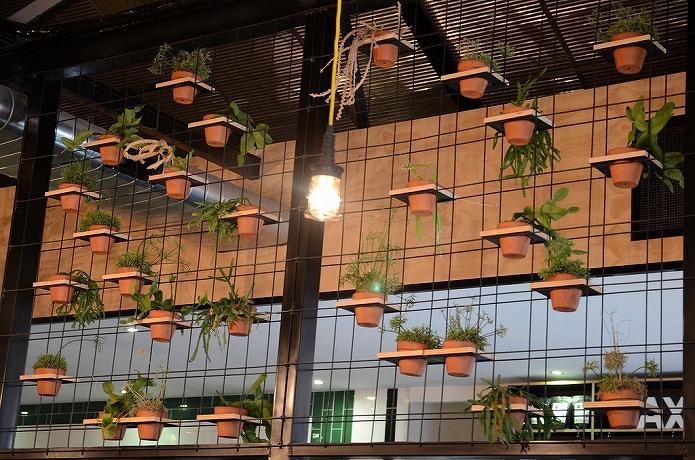 観葉植物をインテリアに 参考になる画像006