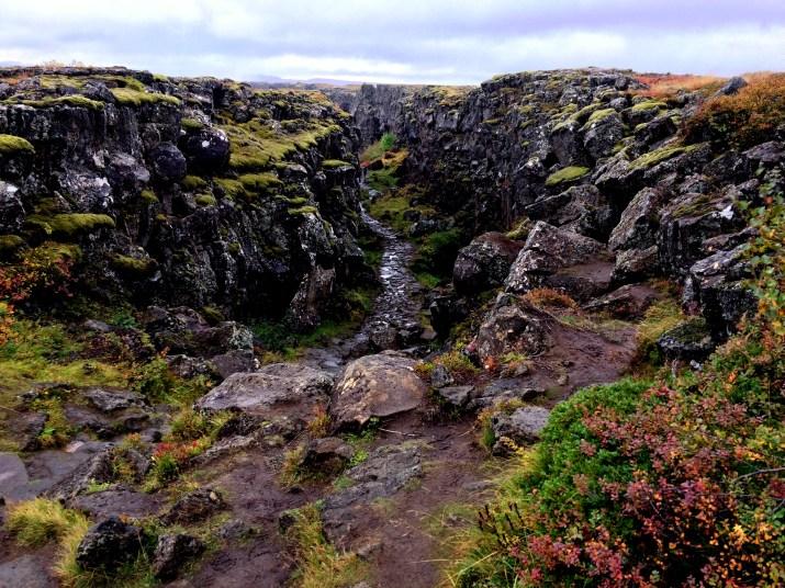 Foto Þingvellir Islanda di Elena Fornai