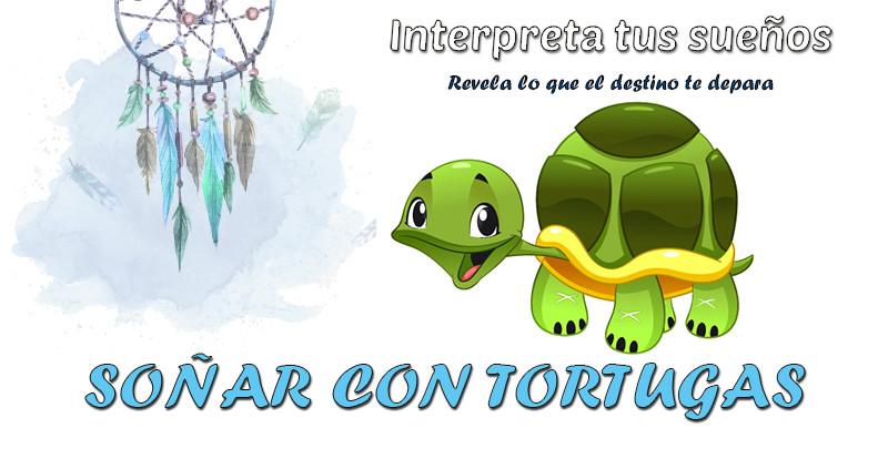 Soñar con Tortugas: ¿QUÉ SIGNIFICA?