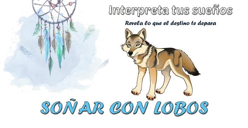 Soñar Con Lobos Qué Significa