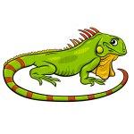 soñar con iguanas