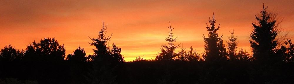 Solnedgang Thorupstrand