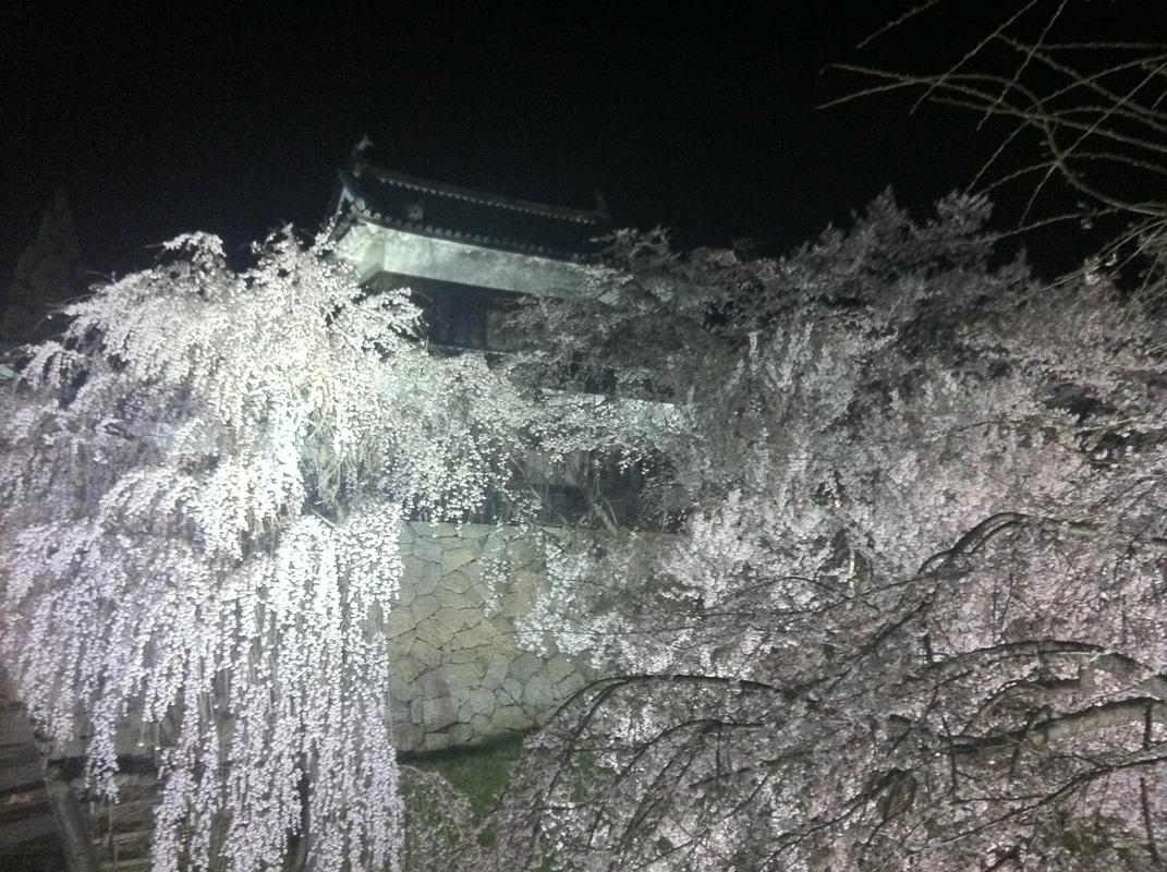 上田城さくら祭り - 訪日.COM
