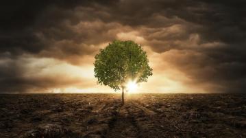 Екологичен дълг