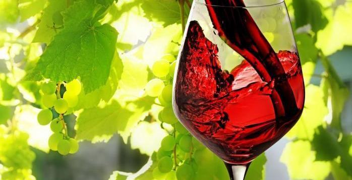 ХТПП ще вземе участие в Созополски фестивал на виното 2019 - ДИОНИСИЕВИ ДНИ