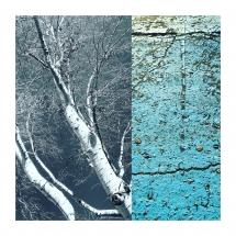 White on blue (Digital Art, 29x29cm)