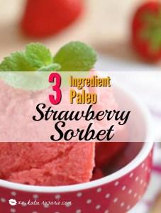 3 Ingredient Paleo Strawberry Sorbet