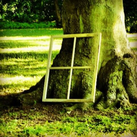 Art in nature?