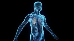 Οι πιο παράξενες ιδιότητες του ανθρώπινου σώματος!
