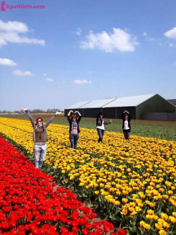 """Performing an ass-kicking YMCA in the breath-taking Dutch flower fields together with 3 of my best friends: Veve, Giani and Ble"""