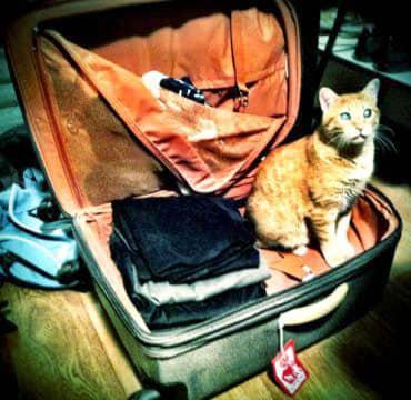 """Take me with you!"""