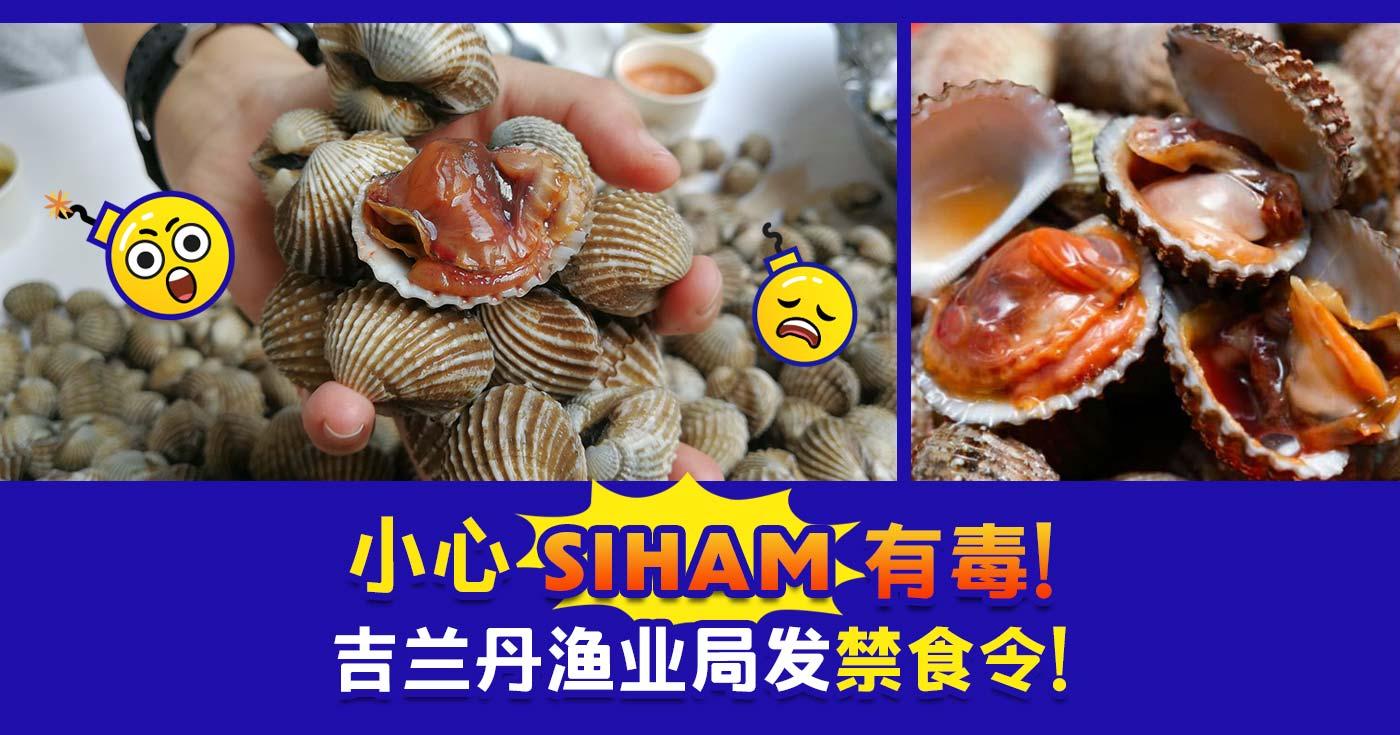 XplodeLIAO_siham_蛤蜊_血蛤_有毒
