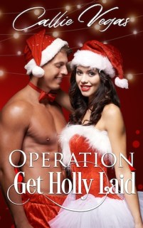 Operation Get Holly Laid cover