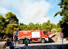 ΑΝΤΙΠΕΡΙΦΕΡΕΙΑ ΚΑΒΑΛΑΣ: Οδηγίες  για την αποφυγή δασικών πυρκαγιών