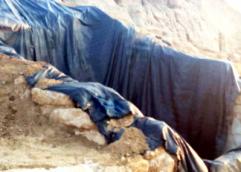 Βασιλικός τάφος Αμφίπολης: Το μυστήριο με τις αποκεφαλισμένες σφίγγες