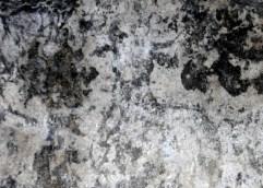 Αμφίπολη: Η παρουσία ενός ταύρου, μιας γυναικείας και μιας ανδρικής μορφής καθώς και μιας φτερωτής νίκης, οδηγούν στα πρώτα συμπεράσματα για πιθανή λατρεία της Ταυροπόλου Αρτέμιδος