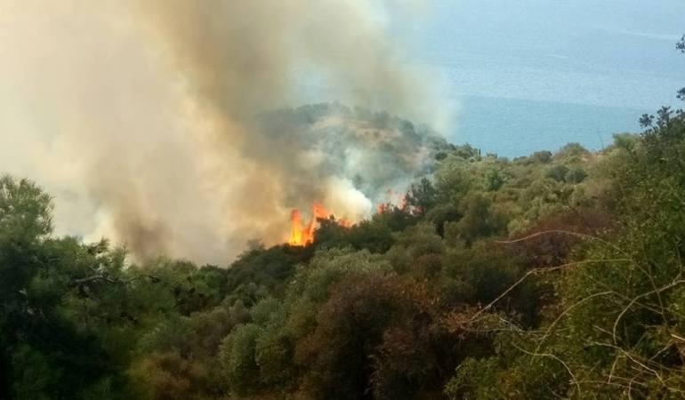 Υπό έλεγχο η φωτιά στην Άσπρη Άμμο, άμεση και πολυπρόσωπη η επέμβαση της Πυροσβεστικής