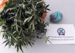 Συνελήφθησαν 2 ημεδαποί κατηγορούμενοι για κατοχή ναρκωτικών στους νομούς Έβρου και Καβάλας