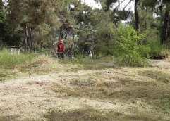 Λιπάσματα και Δήμος Καβάλας καθάρισαν στο δασάκι της Παναγούδας